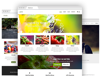 A collection of easy to re–design website themes